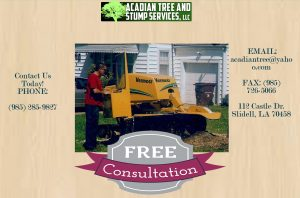Stump Grinding Covington